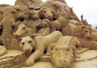 Image Source : Australian Sand Sculpting Championships