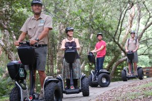 Segway Safari Photo From CurrumbinSanctuary.com