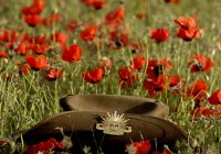 Slouch Hat In Poppies